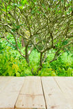 Place for object on wooden table with green summer Stock Photo