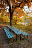 Place for picnic at autumn Stock Image
