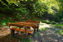 Place of picnic in the forest Stock Image