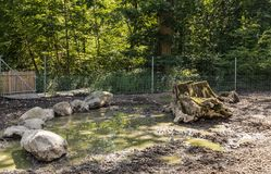 Place for pig. With mud. Public park, city of Lausanne, canton Vaud, Switzerland Royalty Free Stock Photo