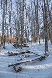 Place for recreation of backpackers in winter forest. Landscape of winter forest, rough-hewn table and benches for relaxation of tourists in forest Stock Image