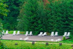 A place for relaxation chaise lounges under green. Spruce stock image
