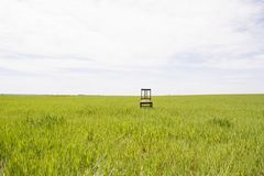 A place of rest and loneliness. Old wooden chair in the middle of the field in the open air Stock Photos