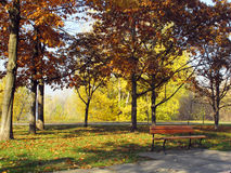 Place for rest in park Stock Photography