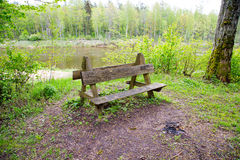 Place for rest. Wooden bench in the national park. Nice place at river Stock Photo