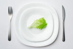 Place setting. Close-up shot of place setting with lettuce leaf 2 royalty free stock image