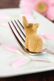 Place setting with easter bunny Stock Image