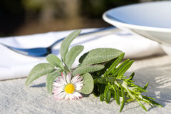 Place setting with herbs Stock Photography