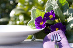 Place setting with napkin Stock Images