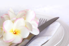 Place Setting with Plumeria Royalty Free Stock Photography
