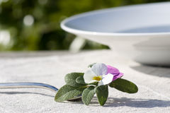 Place setting with sage Stock Photos