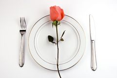Free Place Setting With Rose Royalty Free Stock Photos - 1833888