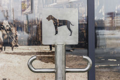 Place with sign for dogs waiting for the owner near the shopping Royalty Free Stock Photo