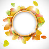 Place for text with autumn leaves Stock Photo