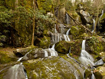Place of a Thousand Drips in Smokies Royalty Free Stock Photography