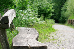 A place to relax. Seat opportunity in the forest royalty free stock photography