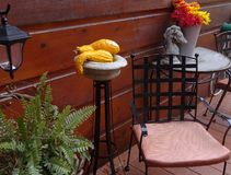 A Place to Relax. Fall Gourds, Fern and Flowers, Iron Chair, Cement Horse Head and Lantern on Porch in Autumn Royalty Free Stock Image
