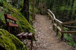 A place to rest. I was walking to one of the Macedonian waterfalls and the place had a bench just to rest in the middle of the walk Royalty Free Stock Images