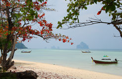 Koh Kradan paladise Thailand Stock Photography