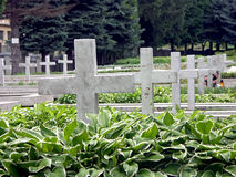 Place of tribute. Military cemetery with concrete white crosses 0812_09 Stock Photography