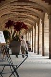 Place of Vosges in Paris stock photo