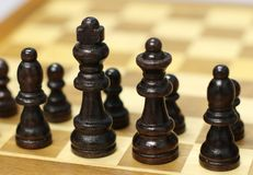 the chess pieces stock images