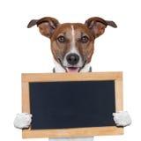 Placeholderfahnenhund Stockbild
