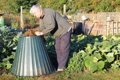 Placement de la matière végétale dans le coffre de compost. Image libre de droits