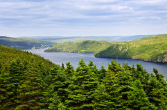 Placentia Bay in Newfoundland. Scenic view of Placentia bay in Newfoundland, Canada royalty free stock image