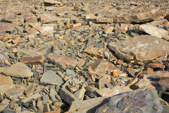 Placer of stones Royalty Free Stock Photos