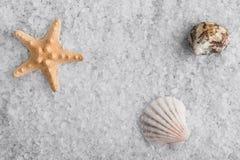 Placer van overzees zout Kristallen van overzees zout Stock Afbeeldingen