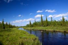 placera den wild floden Royaltyfria Foton