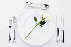 placera rose inställningswhite royaltyfri bild