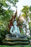 Placerad buddha bild som skyddas av nagaen Royaltyfria Foton