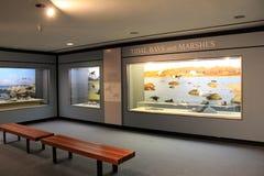 Places assises pour l'objet exposé sur la faune des baies et des marais de marée, musée d'état, Albany, New York, 2016 Photos stock