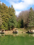 Places for fishing on lake in the forest, Caucasus Nature Reserve Royalty Free Stock Photo