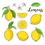 Placez avec des citrons Photo stock