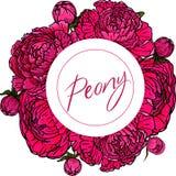 Placez avec des fleurs et des bourgeons de pivoine sur un fond blanc photographie stock