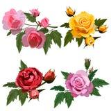 Placez avec des roses Photos stock
