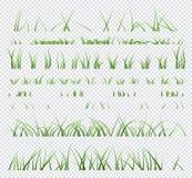 Placez de l'herbe verte d'?l?ments d'isolement sur le fond transparent illustration libre de droits