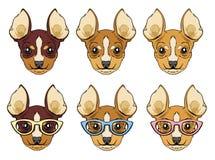 Placez de la tête de chiens de chiwawa illustration libre de droits