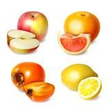 Placez de quatre fruits dans le style réaliste illustration stock