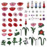 Placez des éléments des pavots et des tulipes d'isolement sur le blanc illustration libre de droits