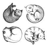 Placez des chats de sommeil Illustration de vecteur de croquis illustration stock