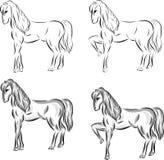 Placez des chevaux tirés de vecteur illustration de vecteur