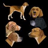 Placez des chiens de chasse illustration libre de droits