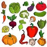 Placez des divers légumes tirés par la main Croquis de nourriture différente D'isolement sur le blanc illustration libre de droits