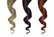 Placez des diverses mèches onduleuses colorées des cheveux Élément de conception de vecteur pour des coiffeurs, salons de beauté, illustration stock