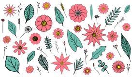 Placez des fleurs de corail tirées par la main d'isolement et les feuilles et les herbes vertes illustration libre de droits