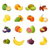 Placez des fruits colorés de bande dessinée d'isolement sur le fond blanc Illustration tropicale de fruits de vecteur illustration libre de droits